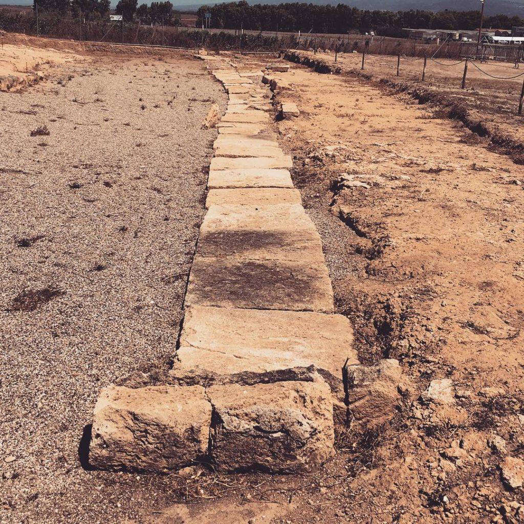 Le tombe a pozzetto della necropoli di Mont'e Prama (Cabras)
